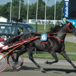 Case Wolvega Punchy Grand Prix Victoria Park betterday