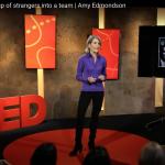 Amy Edmondson TED-talk Teaming Psychological Safety