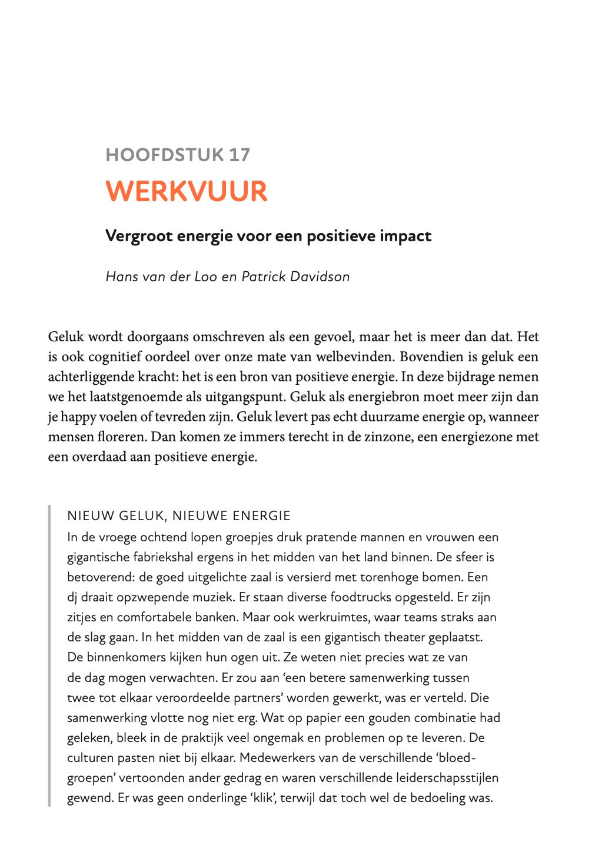 Handboek Werkgeluk - hoofdstuk 17 Hans van der Loo en Patrick Davidson
