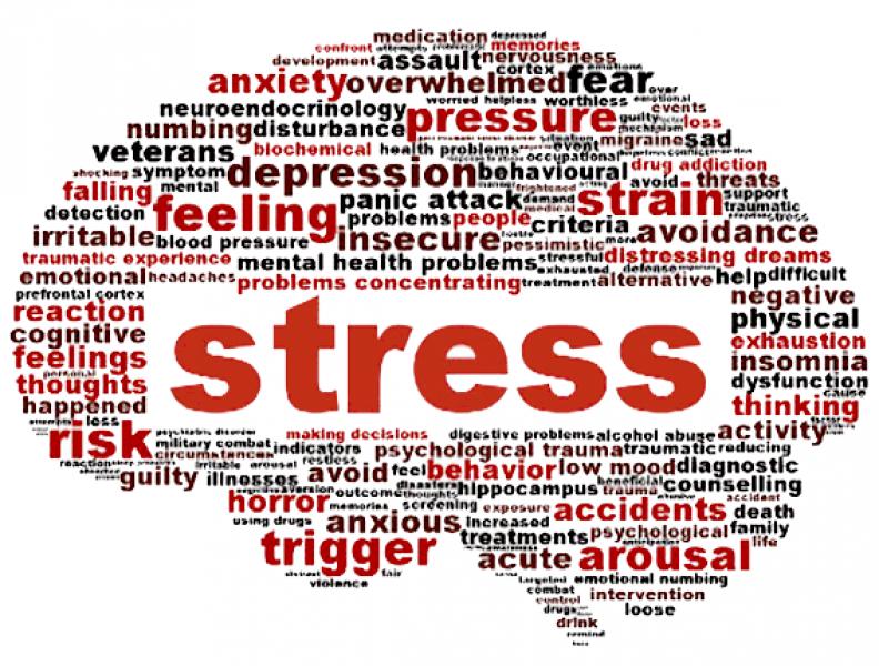 Blue Monday: Stop met stress en sleur! (blog #4)
