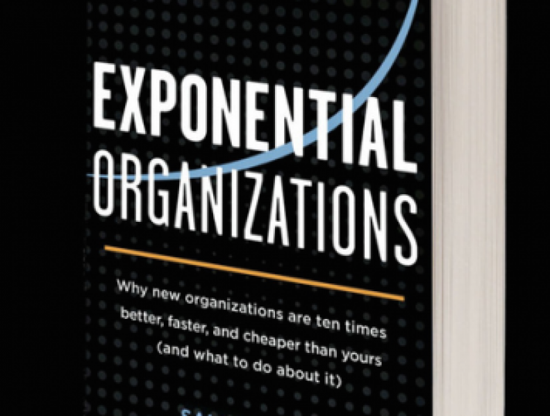 Exponential Organizations, one of the must-read books for this summer!