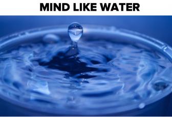 Mind Like Water (een leeg hoofd, een tweede brein)