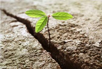 Veerkracht, het omgekeerde van stress (Krachtles 10)